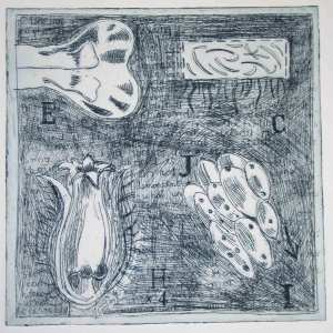 Botanical etching with obscuring layer of cross hatching.